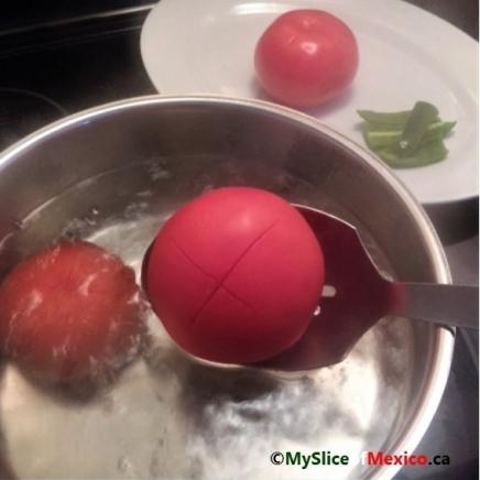 boil scored tomatoes logo