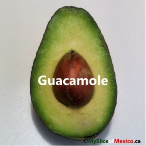 guacamole cover logo
