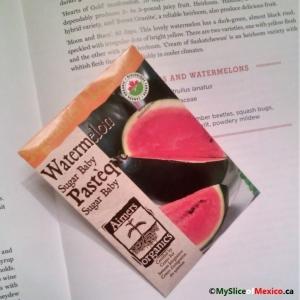 watermelon seeds logo