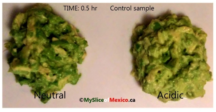 07 half an hour control mashed with and without citric acid enzymatic browning avocado logo
