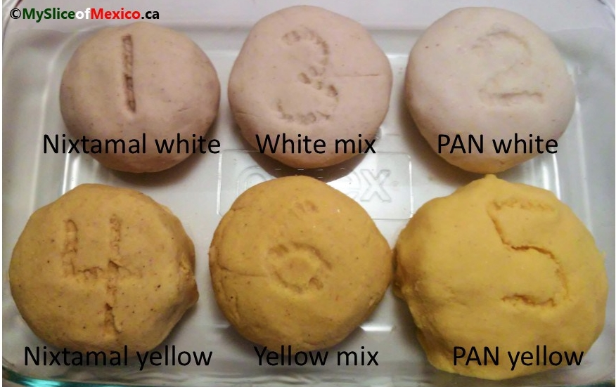 All six corn dough samples My Slice of Mexico