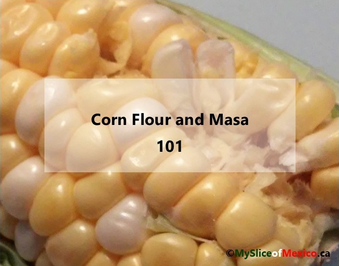 Irene's lab cover Corn Flour and Masa 101