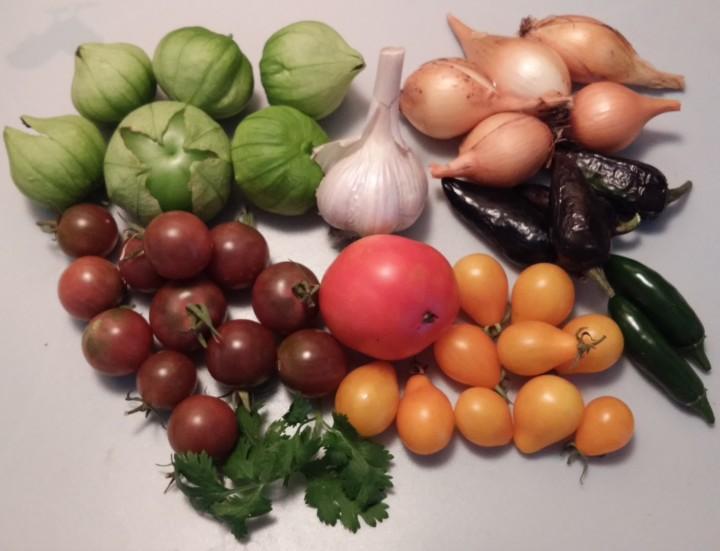 August Harvest – SalsaTime!