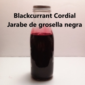 Blackcurrant cordial My Slice of Mexico