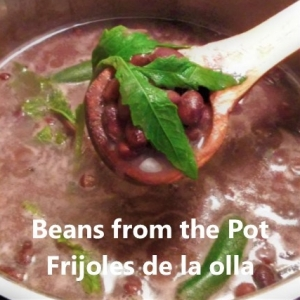 frijoles de la olla My slice of Mexico