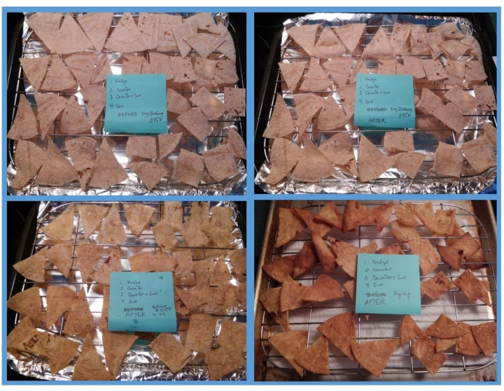 tortilla chips before and after processing