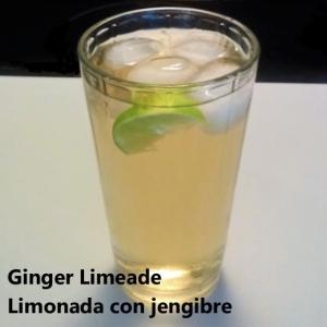 ginger limeade square
