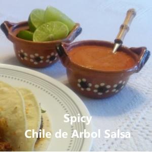 spicy chile de arbol salsa square