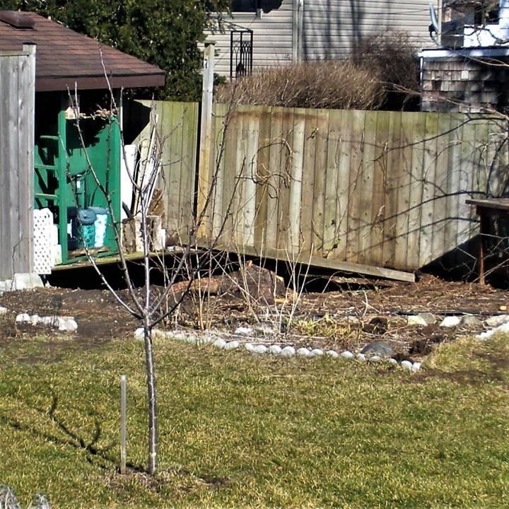 008 February 29 2016 fallen fence