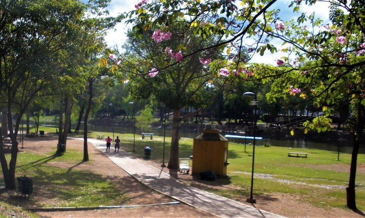 006 Park and trail by the river Culiacan 2015