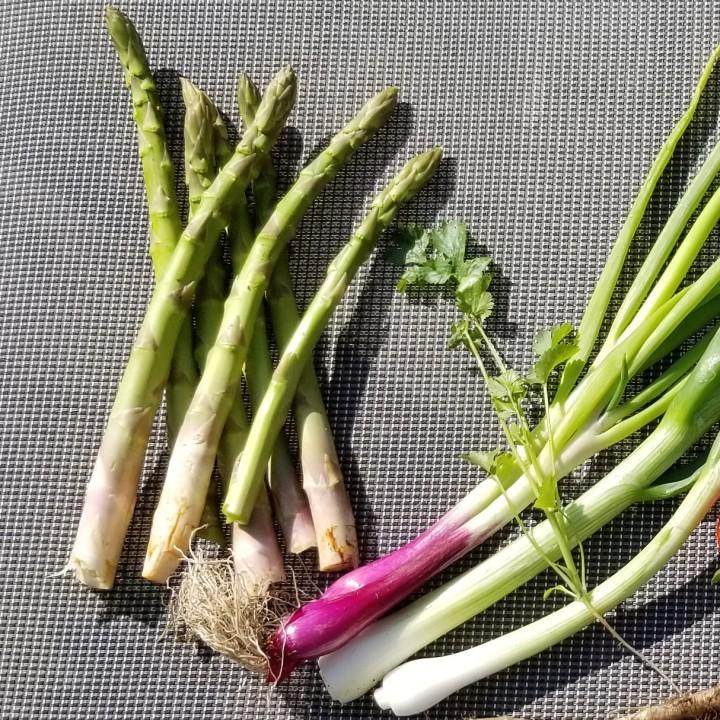 001 garden veggies 1