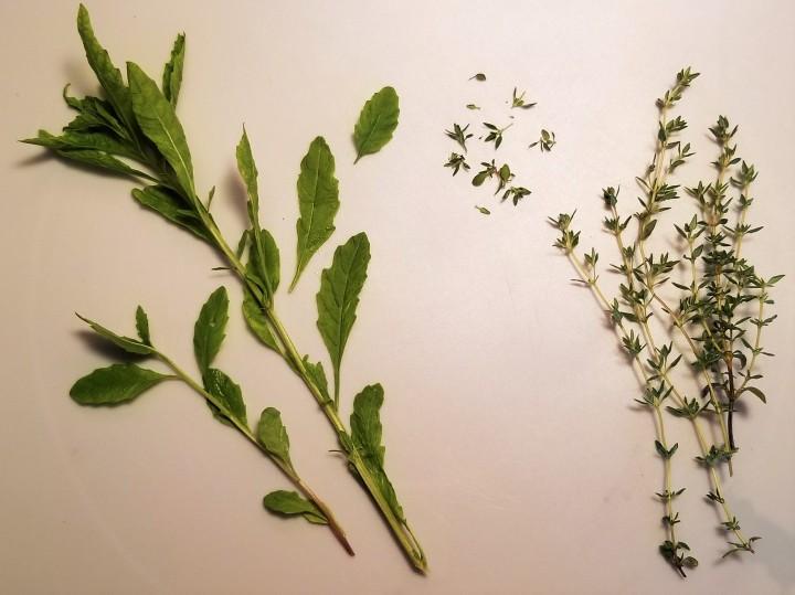 006 herbs epazote, thyme