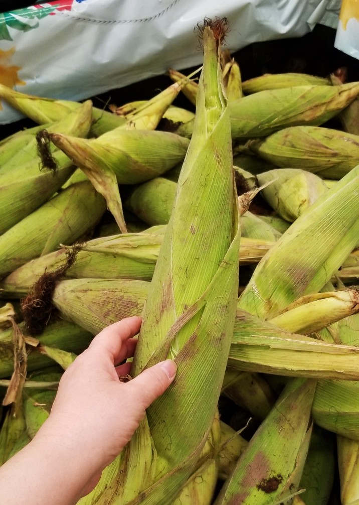 Fresh ears of corn at a stand in Mexico (2019)